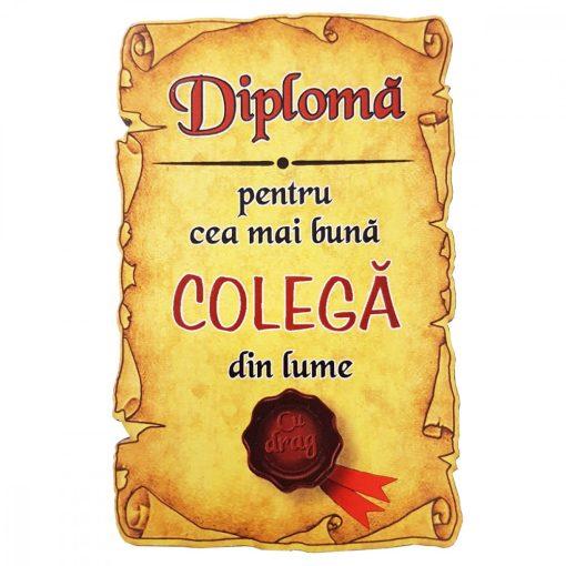 Magnet Diploma pentru cea mai buna COLEGA din lume, lemn