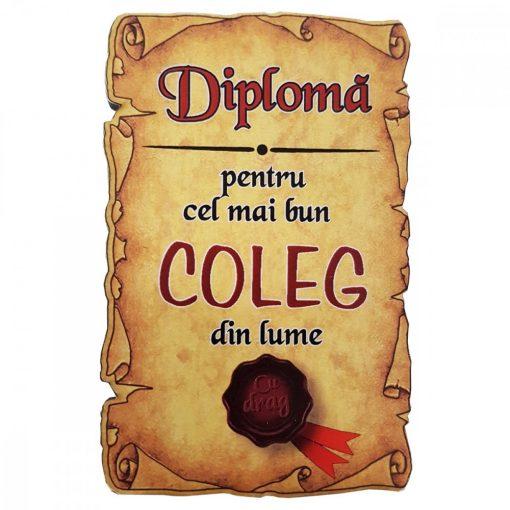 Magnet Diploma pentru cel mai bun COLEG din lume, lemn